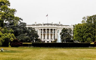 CALL LAW APP What-Are-the-Rules-for-Presidential-Pardons-400x250 Blog